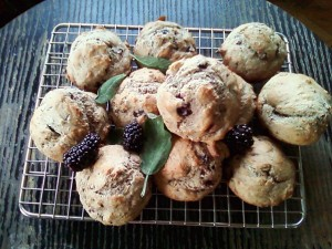 Blackberry Wheat Muffins