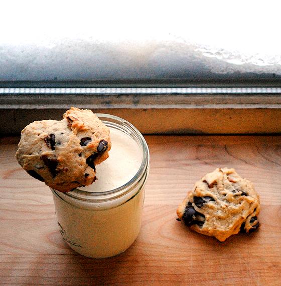 Chocolate Chip Yogurt Cookies with a Glass of Milk